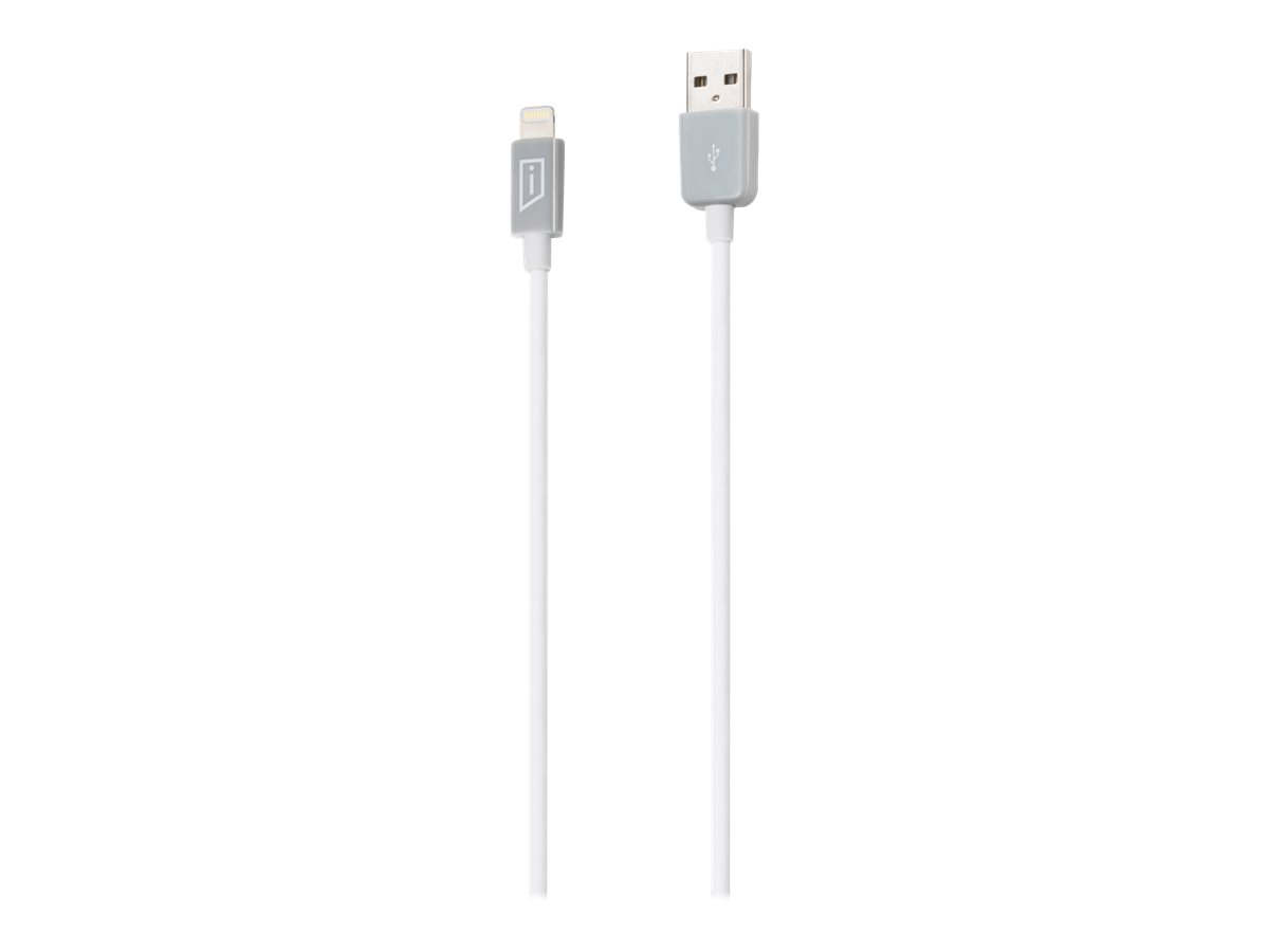 iStore Lightning cable - 10 ft