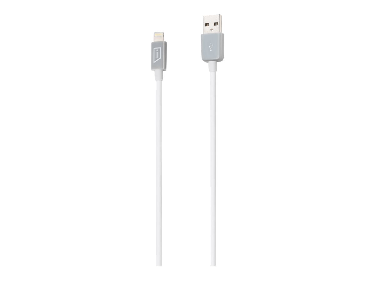 iStore Lightning cable - 3.3 ft