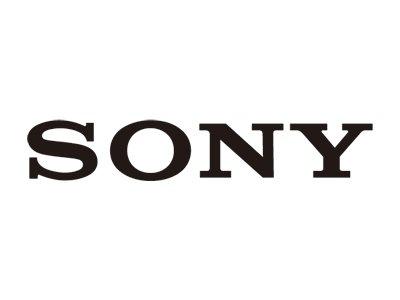 Sony - notebook battery - Li-pol - 46 Wh