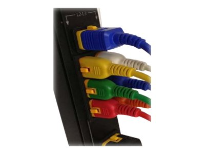 Schneider Electric Color Coded Locking Power Cords - power cable - IEC 60320 C20 to IEC 60320 C19 - 4 ft